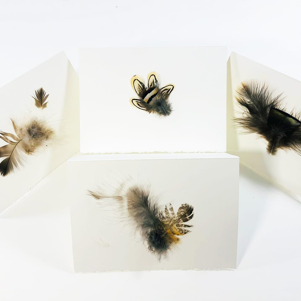 blank greeting cards, feather cards, cards and envelopes, pass the feather
