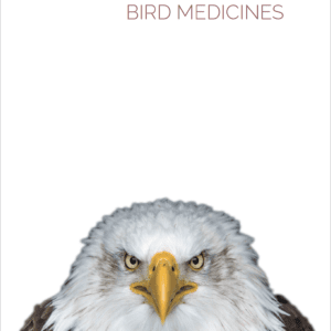 a little book of bird medicines, IndigenARTSY, Indigenous Artists, Indigenous Arts Marketplace, Indigenous Arts Collective of Canada, Pass The Feather, First Nations, Indigenous Art, Aboriginal Art, Indigenous Art Directory