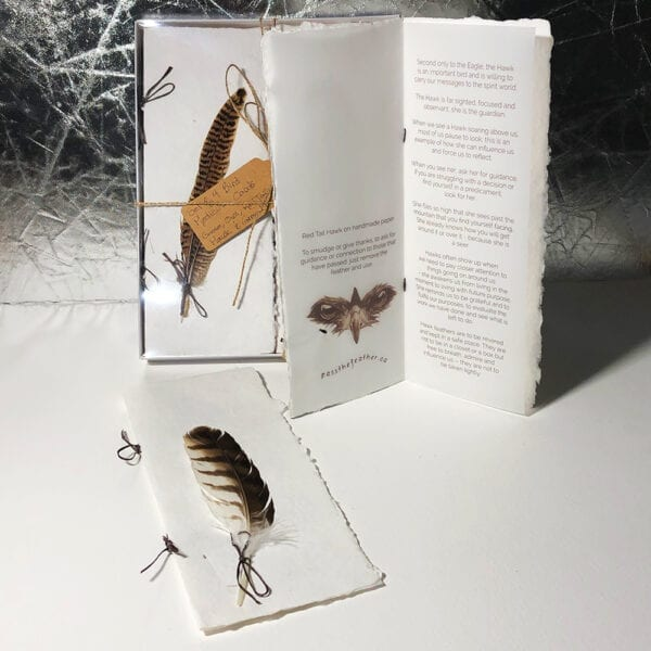 bird medicine cards, pass the feather, indigenartsy