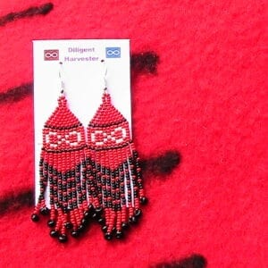 nwc point blanket earrings