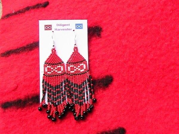 nwc point blanket earrings